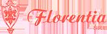 Florentia Srl: Impresa Edile Pavia